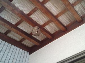 スズメ蜂の巣駆除 前